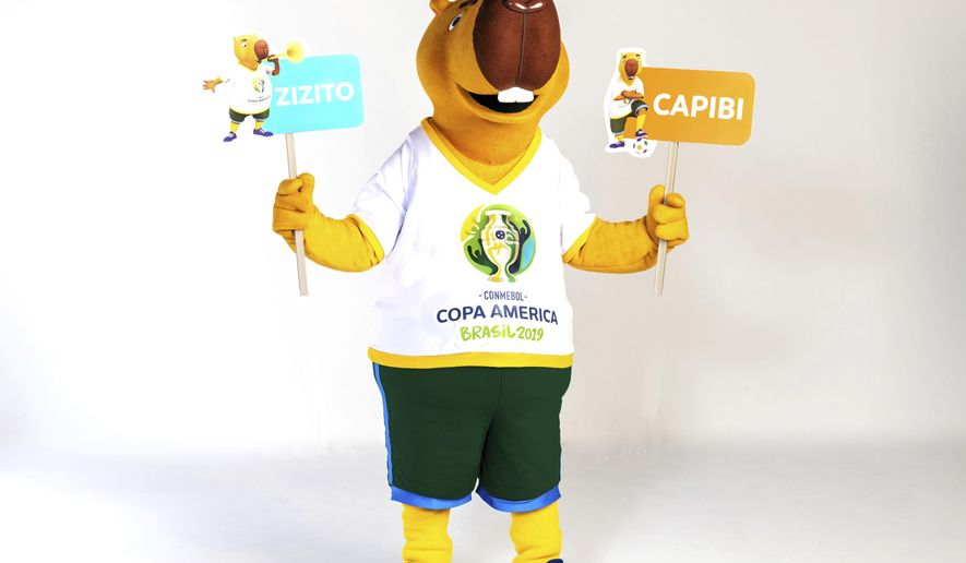 This 2019 handout photo released by Col Copa America Brasil 2019, shows the Copa Americas mascot in Rio de Janeiro, Brazil. Soccer fans will choose the name of the mascot of Copa America in Brazil this year. The organization of the tournament published on Friday two name suggestions for its capybara mascot; Capibi and Zizito. The vote will be open in Copa America's social media feeds until Apr.12. (Alexandre Loureiro-Copa America Brasil 2019 via AP)