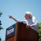Presidential candidate Bernard Sanders is expected to address People's Wave Convention this week. speaks at rally in Fort Worth, Texas, Thursday, April 25, 2019. (AP Photo/Michael Ainsworth) (Associated Press)