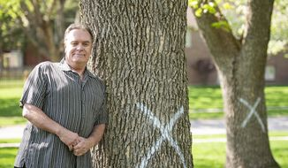 In this Thursday, April 25, 2019 photo, Allen Barber poses with two ash trees marked to be cut down in the Wellington Greens development in Lincoln, Neb. Barber feels the trees should be treated rather than cut down in response to emerald ash borer. (Kayla Wolf/Lincoln Journal Star via AP)