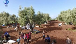 This frame grab from video provided by the activist-operated Thiqa News Agency, shows residents displaced from the latest violence that hit the last rebel stronghold, taking refuge in olives orchids near the town of al-Atmeh, in northern Idlib, Syria, Thursday, May 9, 2019. Syrian government troops captured the village of Qalaat al-Madiq, a northwestern village known for its medieval fortress, on Thursday as they move deeper toward Idlib province, the last major rebel stronghold, activists and pro-government media said. (Thiqa News Agency via AP)