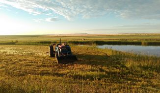 A tractor pauses along a pond developed on Conservation Grains farmland near Choteau, Minn. Grain from the farm, and sourced from other farms, is used in a craft milling venture. (Judy Cornell/The Great Falls Tribune via AP)