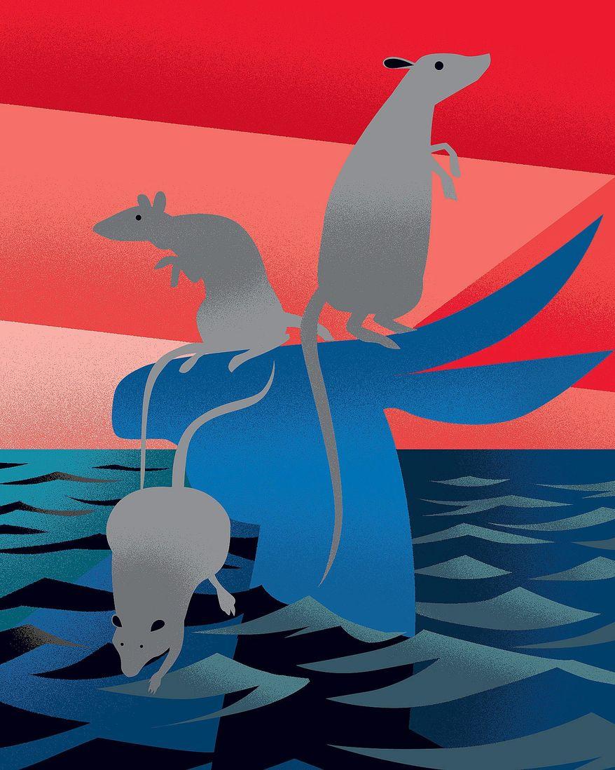 Rats Fleeing Illustration by Linas Garsys/The Washington Times
