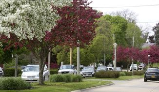 In this Tuesday, May 14, 2019 photo, traffic moves along South Grandview Avenue in Dubuque, Iowa. City officials recently informed residents that nearly 20 large plant beds along Grandview Avenue will undergo changes over the next two years.  (Jessica Reilly/Telegraph Herald via AP)