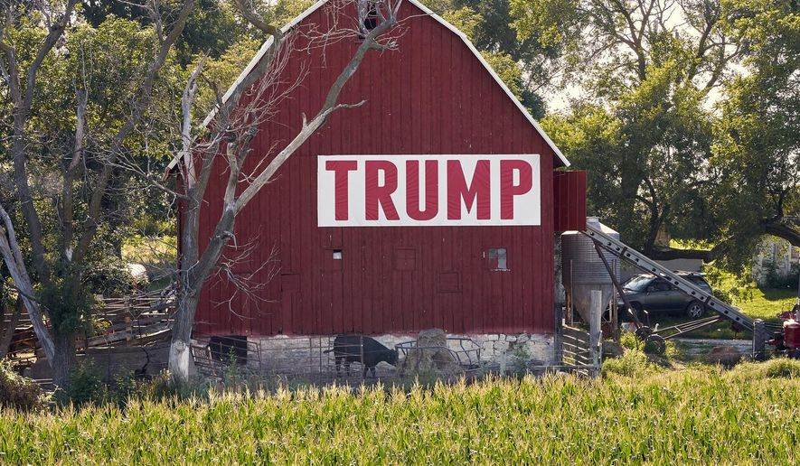 FILE - In this July 24, 2018 file photo, corn grows in front of a barn carrying a large Trump sign in rural Ashland, Neb. The Trump administration is following through on a plan to allow year-round sales of gasoline mixed with 15% ethanol. The Environmental Protection Agency announced the change Friday, May 31, 2019, ending a summertime ban imposed out of concerns for increased smog from the higher ethanol blend. The change also fulfills a pledge that President Donald Trump made to U.S. corn farmers to allow the higher ethanol sales year-round. (AP Photo/Nati Harnik File)