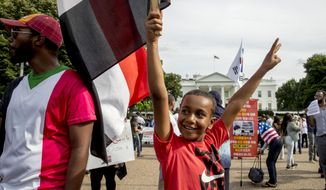 A boy holds a Sudanese flag as Sudanese Americans rally outside the White House in Washington, Saturday, June 8, 2019, in solidarity with Pro-democracy protests in Sudan. Pro-democracy protest leaders in Sudan on Saturday called on Sudanese to take part in acts of civil disobedience in a bid to pressure the military to hand over power after the deadly break-up of their main sit-in in the capital of Khartoum earlier this week. (AP Photo/Andrew Harnik)