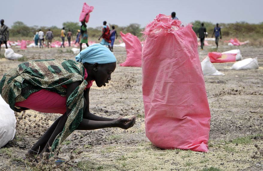In this Wednesday, May 2, 2018, photo, a woman scoops fallen sorghum grain off the ground after an aerial food drop by the World Food Programme (WFP) in the town of Kandak, South Sudan. A record number of people in South Sudan face a critical lack of food according to a new joint report by the government and the United Nations released Friday, June 14, 2019, that says almost seven million people, or more than 60 percent of the population, are at risk. (AP Photo/Sam Mednick) **FILE**