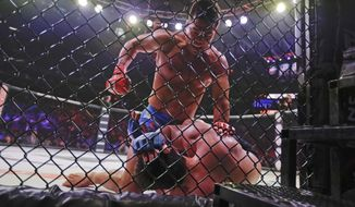 Brazil's Lyoto Machida, above, punches Chael Sonnen during the second round of a light heavyweight mixed martial arts bout at Bellator 222 early Saturday, June 15, 2019, in New York. Machida stopped Sonnen in the second round. (AP Photo/Frank Franklin II)