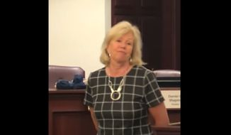 """Illinois State Sen. Julie Morrison tells a constituent that perhaps she and her fellow Democrats should consider a gun """"confiscation"""" plan in response to pointed gun-rights questions at a June 11, 2019 town hall event. (Image: YouTube, Illinois State Rifle Association video screenshot)"""