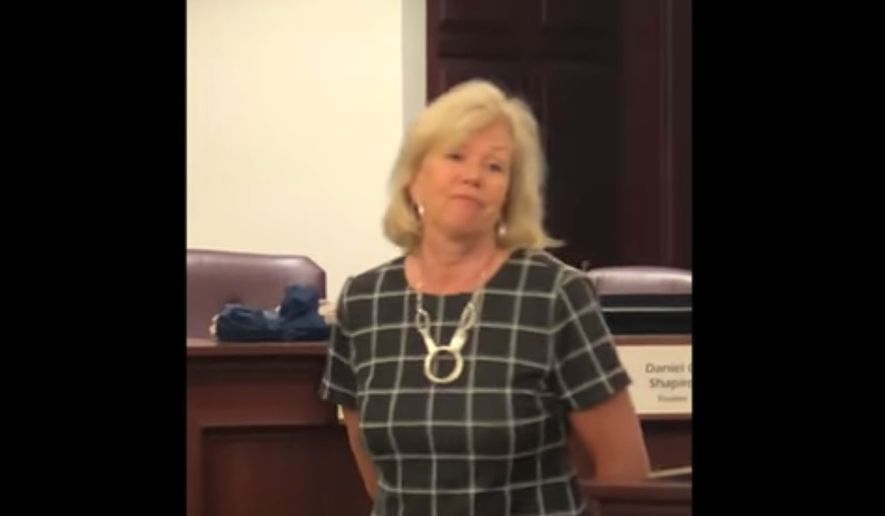 "Illinois State Sen. Julie Morrison tells a constituent that perhaps she and her fellow Democrats should consider a gun ""confiscation"" plan in response to pointed gun-rights questions at a June 11, 2019 town hall event. (Image: YouTube, Illinois State Rifle Association video screenshot)"