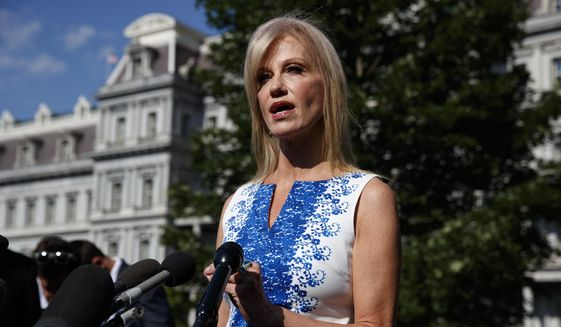 White House counselor Kellyanne Conway talks to reporters outside the White House, Monday, June 24, 2019, in Washington. (AP Photo/Evan Vucci) ** FILE **