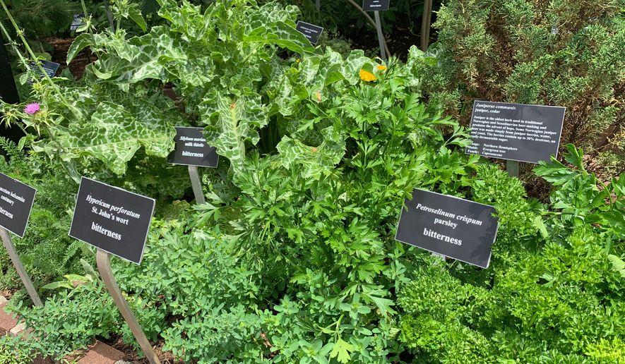 National Arboretum Beer Garden Impresses Washington D C