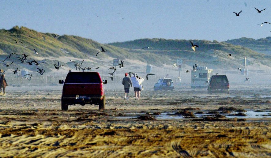 FILE - In this Sept. 27, 2001, file photo, people in vehicles and on horseback, dogs and other animals, campers and birds all share the sand at Oceano Dunes State Vehicular Recreation Area at Oceano on California's Central Coast. The California Coastal Commission is considering a plan to phase out off-road vehicles at the Oceano Dunes Natural Preserve on the central coast. Hundreds of people turned out Thursday, July 11, 2019, for the public comment portion of the commission's meeting in San Luis Obispo. (AP Photo/Reed Saxon, File)