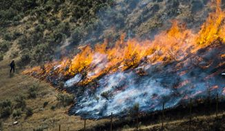 """In this July 30, 2018, file photo, firefighters control the Tollgate Canyon fire as it burns near Wanship, Utah. The Trump administration is proposing an ambitious plan to slow Western wildfires by bulldozing, mowing or revegetating large swaths of land along 11,000 miles of terrain in the West. The plan announced this summer would create strips of land known as """"fuel breaks"""" in parts of Idaho, Oregon, Washington, California, Nevada and Utah. (Rick Egan/The Salt Lake Tribune via AP, File)"""