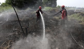 Fire fighters spray water to extinguish wild fire in Tapung, Riau province, Indonesia, Thursday, Aug. 1, 2019. A spate of forest fires burning throughout Indonesia has prompted six provinces to declare a state of emergency as thousands of security forces have deployed to extinguish fires. (AP Photo/Rafka Majjid)