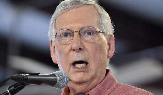Senate Majority Leader Mitch McConnell, R-Ky., addresses the audience gathered at the Fancy Farm Picnic in Fancy Farm, Ky., Saturday, Aug. 3, 2019. (AP Photo/Timothy D. Easley) **FILE**
