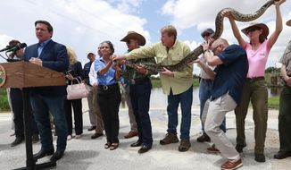 A group of people hold a 12-ft. python as Florida Gov. Ron DeSantis, left, speaks during a news conference at Everglades Holiday Park, Wednesday, Aug. 7, 2019, in Fort Lauderdale, Fla. DeSantis said the state is expanding its efforts to eradicate invasive pythons in the Everglades and is working with the federal government to get snake hunters to remote areas of Big Cypress National Preserve. (AP Photo/Wilfredo Lee)