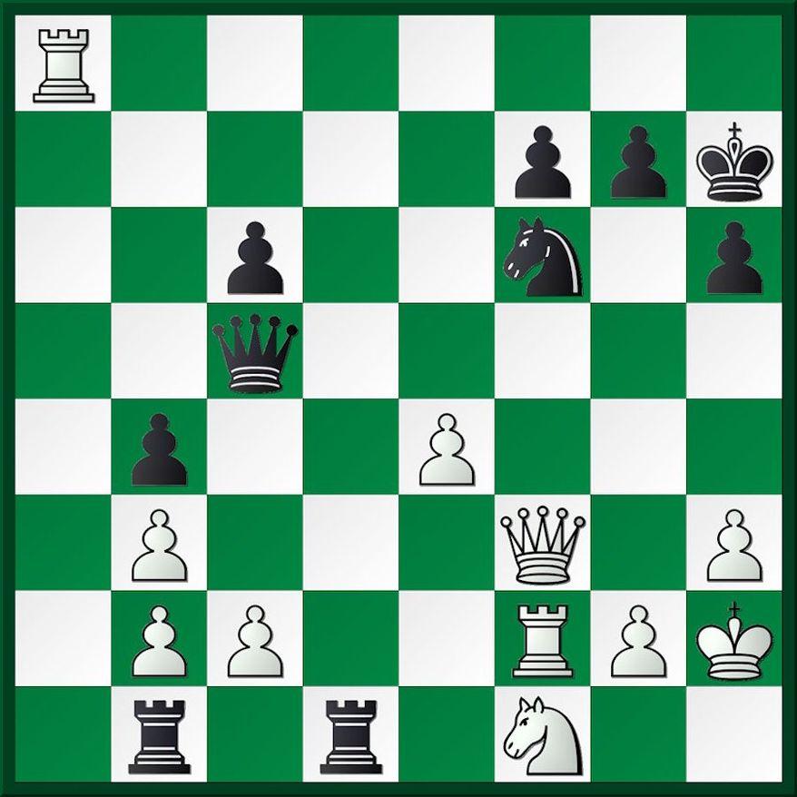 Mitkov-Paul after 29. Kg1-h2.