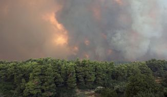 A huge cloud of smoke rise from a forest fire at Psachna village on the island of Evia, northeast of Athens, Tuesday, Aug. 13, 2019. Dozens of firefighters backed by water-dropping aircraft are battling a wildfire on an island north of Athens that has left the Greek capital blanketed in smoke. (AP Photo/Yorgos Karahalis)