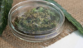 A sample of marijuana is placed on a table during a press conference at Thailand's Health Ministry in Bangkok, Thailand, Wednesday, Aug. 7, 2019. The Health Ministry received its first batch of legal medical marijuana to be distributed in state-run hospitals. (AP Photo/Sakchai Lalit)
