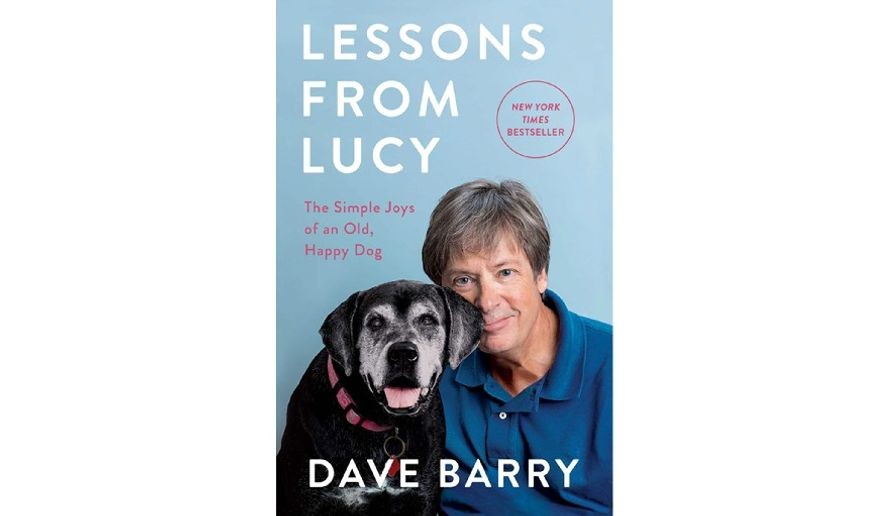 'Lessons from Lucy' (book jacket)