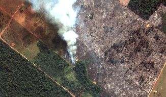 This Aug. 15, 2019 satellite image from Maxar Technologies shows closeup view of a fire southwest of Porto Velho Brazil. Brazil's National Institute for Space Research, a federal agency monitoring deforestation and wildfires, said the country has seen a record number of wildfires this year as of Tuesday, Aug. 20.   (Satellite image ©2019 Maxar Technologies via AP)