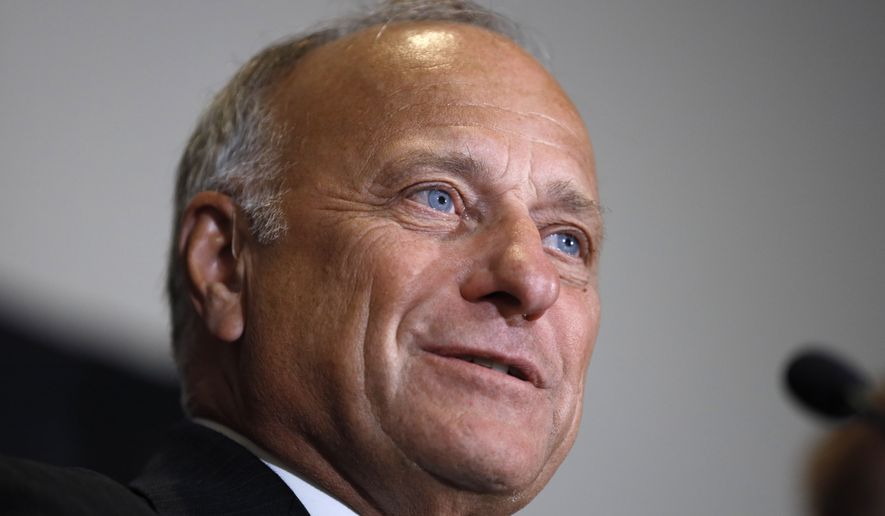 U.S. Rep. Steve King, R-Iowa, speaks during a news conference, Friday, Aug. 23, 2019, in Des Moines, Iowa. (AP Photo/Charlie Neibergall)