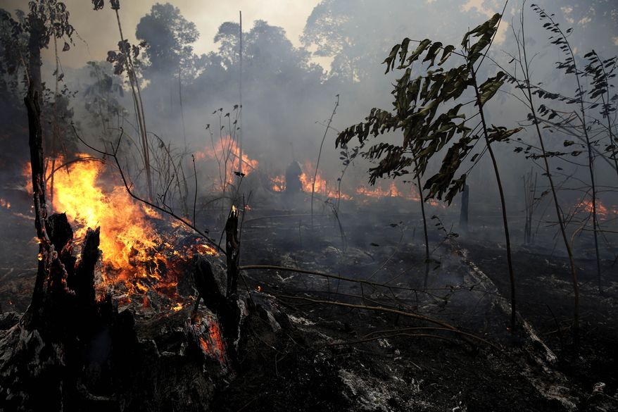 """A fire burns trees and brush along the road to Jacunda National Forest, near the city of Porto Velho in the Vila Nova Samuel region which is part of Brazil's Amazon, Monday, Aug. 26, 2019. The Group of Seven nations on Monday pledged tens of millions of dollars to help Amazon countries fight raging wildfires, even as Brazilian President Jair Bolsonaro accused rich countries of treating the region like a """"colony."""" (AP Photo/Eraldo Peres)"""