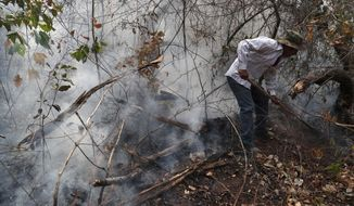 A resident helps to put out a forest fire in the Chiquitania Forest of Quitunuquina near Robore, Bolivia, Monday, Aug. 26, 2019. Bolivia has struggled to contain fires that swept through woods and fields. A U.S.-based aircraft, the B747-400 SuperTanker, is flying over devastated areas in Bolivia to help put out the blazes and protect forests. (AP Photo/Juan Karita)