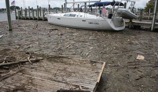 "FILE - In a Wednesday, Aug. 1, 2018 file photo, debris washed into Maryland waters from record rainfall accumulates around a sailboat in Annapolis, Md. Gov. Larry Hogan says Maryland has ""alarming concerns"" about neighboring Pennsylvania's efforts to meet clean water goals and how falling short will affect the Chesapeake Bay.  (AP Photo/Brian Witte, File)"