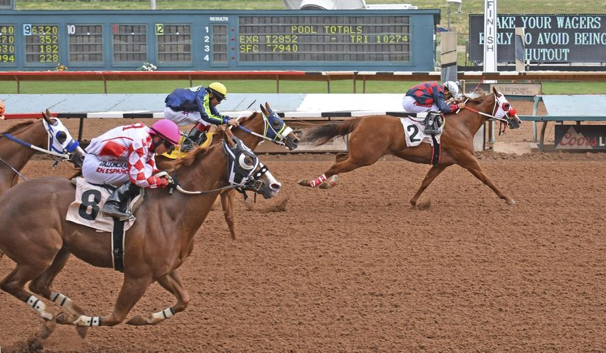This Aug. 18, 2019, photo provided by Ruidoso Downs shows horses racing during trials at Ruidoso Downs, New Mexico.  A horse owner and a trainer from Texas say officials in New Mexico are failing to follow their own policies and regulations in overseeing the state's multimillion-dollar racing industry. They're suing in U.S. District Court, alleging their rights to due process were violated when the executive director of the New Mexico Racing Commission allowed horses belonging to a trainer suspended for suspicion of illegal drugging to compete under other trainers. (Jake Rogers/Ruidoso Downs via AP)