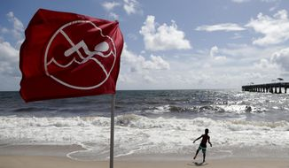 A boy plays on the beach as a No Swimming flag flies, Saturday, Aug. 31, 2019, in Lake Worth, Fla. Hurricane Dorian is bearing down on the northwestern Bahamas as a Category 4 storm. Forecasters say Dorian is then expected to go up the Southeast coastline. (AP Photo/Lynne Sladky)
