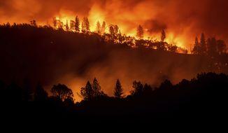 In this Nov. 10, 2018, file photo, the Camp Fire burns along a ridge top near Big Bend, Calif. (AP Photo/Noah Berger, File)