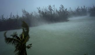 Strong winds from Hurricane Dorian blow the tops of trees and brush while whisking up water from the surface of a canal that leads to the sea, located behind the brush at top, seen from the balcony of a hotel in Freeport, Grand Bahama, Bahamas, Monday, Sept. 2, 2019. (AP Photo/Ramon Espinosa)