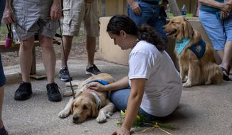 Katelyn Cooper pets a comfort dog during a vigil, Sunday, Sept. 1, 2019, at the University of Texas of the Permian Basin, in Odessa, Texas, for victims of a shooting spree the day before. (Jacy Lewis/Reporter-Telegram via AP)