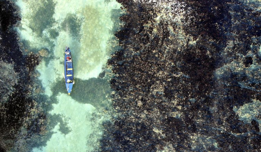 White River Fish Sanctuary wardens patrol through the reef of the sanctuary's no-take zone in Ocho Rios, Jamaica, Tuesday, Feb. 12, 2019. After a series of disasters in the 1980s and 1990s, Jamaica lost 85 percent of its once-bountiful coral reefs and its fish population plummeted. But today, the corals and tropical fish are slowly reappearing thanks to some careful interventions. (AP Photo/David Goldman)