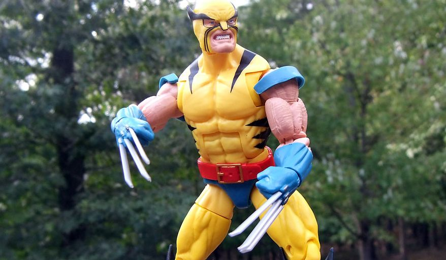 Hasbro's Marvel Legends 80th Anniversary collection includes Wolverine wearing a costume seen during his first appearance in the comic book The Incredible Hulk No. 181. (Photograph by Joseph Szadkowski / The Washington Times)