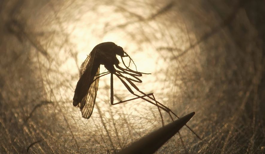 A record number of infections of the mosquito-borne Eastern equine encephalitis has been reported in six states and blamed for seven deaths. (ASSOCIATED PRESS)