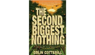 'The Second Biggest Nothing' (book jacket)