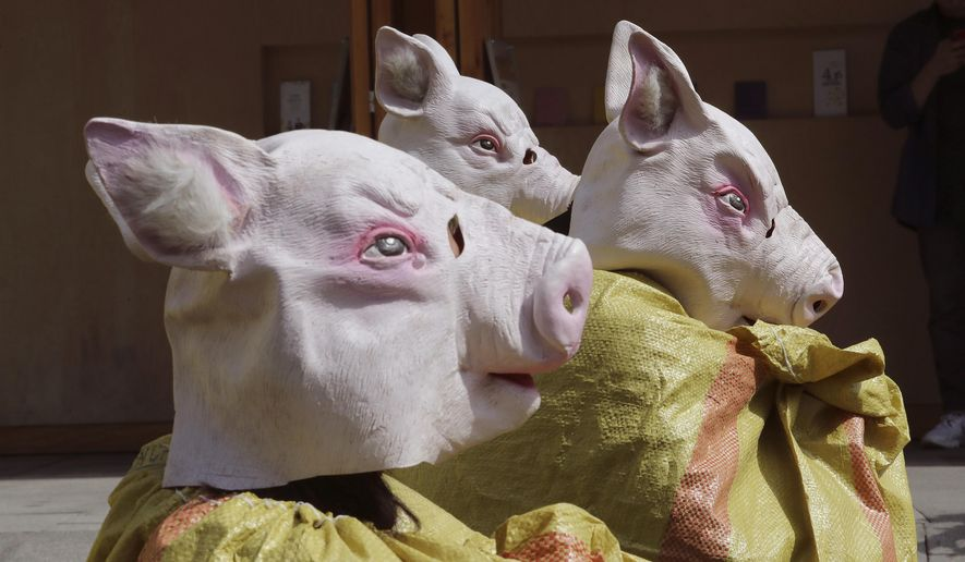 Animal right activists wearing pig masks stage a memorial rally for those slaughtered due to African swine fever in Seoul, South Korea, Thursday, Sept. 26, 2019. South Korea on Wednesday said it was intensifying efforts to clean farms around the country as it scrambles to contain the spread of the highly contagious African swine fever that has ravaged farms near its border with North Korea. (AP Photo/Ahn Young-joon)