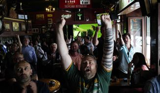 South African fans react to their team scoring as they watch in Johannesburg, South Africa Friday Oct. 4, 2019 in a local pub the Rugby World Cup Pool B game between South Africa and Italy being played in Japan South Africa defeated Italy 49-3. (AP Photo/Jerome Delay)