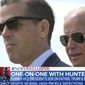 Hunter Biden, the son of former Vice President Joseph R. Biden, sat down with ABC News for a one-on-one interview to discuss his business dealings and a host of other issues. (Image: ABC News screenshot)