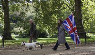 A anti-Brexit supporters carries the Union Jack highlighted with stars of the EU flag in London, Saturday, Oct. 19, 2019. In their first weekend session in 37 years, British lawmakers in Parliament debated whether to accept Prime Minister Boris Johnson's proposed new divorce deal with the European Union. (AP Photo/Kirsty Wigglesworth)