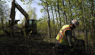 FILE - In this May 29, 2019 file photo, Eric Olson, right, gathers his tools as contractor Robert Radotich uses a backhoe to dig areas so the soil stratification can be observed, which will help them engineer and design the infiltration pods for the PolyMet copper-nickel mine in Hoyt Lakes, Minn. The Minnesota Court of Appeals is deciding whether to grant requests by opponents of the proposed PolyMet copper-nickel mine to cancel two of its most important permits and order further proceedings. (Anthony Souffle/Star Tribune via AP, File)