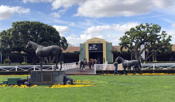 FILE - In this March 28, 2019, file photo, horses are led to paddocks past the Seabiscuit statue during workouts at Santa Anita Park in Arcadia, Calif. A 3-year-old gelding was fatally injured in the fifth race at Santa Anita on Saturday, becoming the 34th horse to die at the track since December. According to a statement from track owner The Stronach Group, jockey Ruben Fuentes pulled up Satchel Paige at the three-eighths pole of the 6 1/2-furlong sprint. Track veterinarian Dr. Dana Stead saw that the gelding had sustained an open fracture of his left front ankle and decided to euthanize him. (AP Photo/Amanda Lee Myers, File)