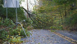 A fallen tree and down power lines block E Street Road near Middletown Road after Thursday's storm in Thornbury Township, Pa.  Friday, Nov. 1, 2019.  Homes have been destroyed in Pennsylvania and hundreds of thousands of utility customers were left without power after severe thunderstorms struck the Eastern Seaboard. At least 420,000 customers from South Carolina up to Maine and in Ohio were without power just before midnight Thursday.  (Jessica Griffin/The Philadelphia Inquirer via AP)