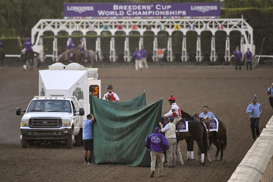 """Track workers treat Mongolian Groom after the Breeders' Cup Classic horse race at Santa Anita Park, Saturday, Nov. 2, 2019, in Arcadia, Calif. The jockey eased him up near the eighth pole in the stretch. The on-call vet says he has """"serious"""" injury to leg. Was taken to equine hospital on the grounds. (AP Photo/Mark J. Terrill)"""