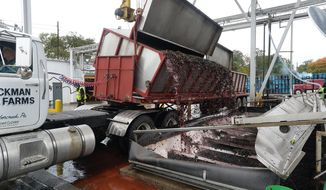 At Welch Foods Inc., grapes are moved from a truck into a pit, center, where underground pumps move grape juice via pipes, background top, to begin the process of producing grape juice, jam and jelly in North East, Pa., on Oct. 22, 2019. (Greg Wohlford/Erie Times-News via AP)