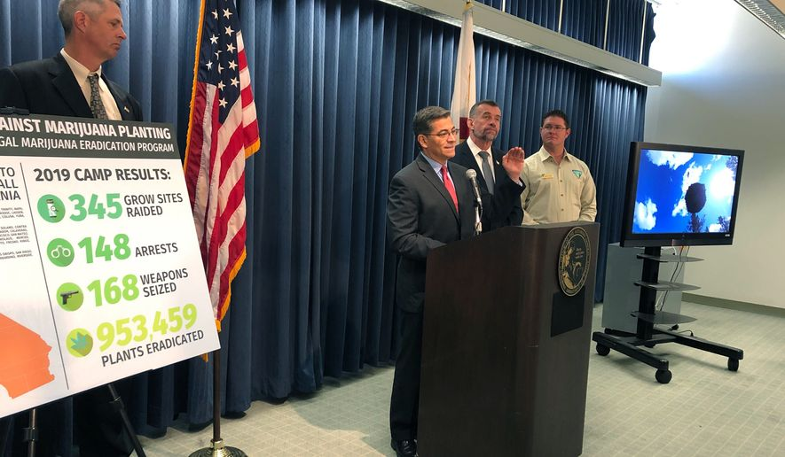 California Attorney General Xavier Becerra, at podium, discusses the results of an illegal marijuana eradication program during a press conference Monday, Nov. 4, 2019, in Los Angeles. The the results are part of an effort to target illegal cannabis grows on public lands statewide. (AP Photo/Stefanie Dazio)