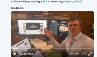 "Project Veritas president James O'Keefe says a ""vortex of propaganda"" has been created to suppress his organization's bombshell on ABC News and its spiked story on billionaire sex offender Jeffrey Epstein. (Image: Twitter, James O'Keefe)"