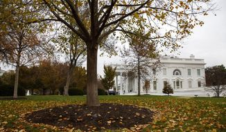 Fall foliage covers the North Lawn of the White House, Wednesday, Nov. 20, 2019, in Washington. (AP Photo/Jacquelyn Martin)